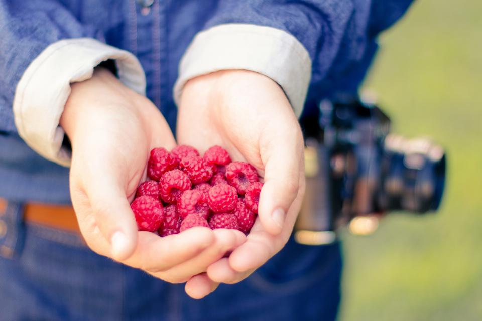 Ress Berries