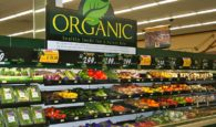Organic Healthy Foods