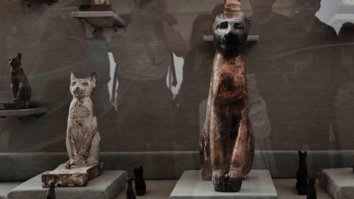 Cats Sarcophagi