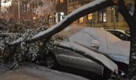 Snowstorm killing 8