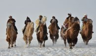 Camel Hunter Shaman